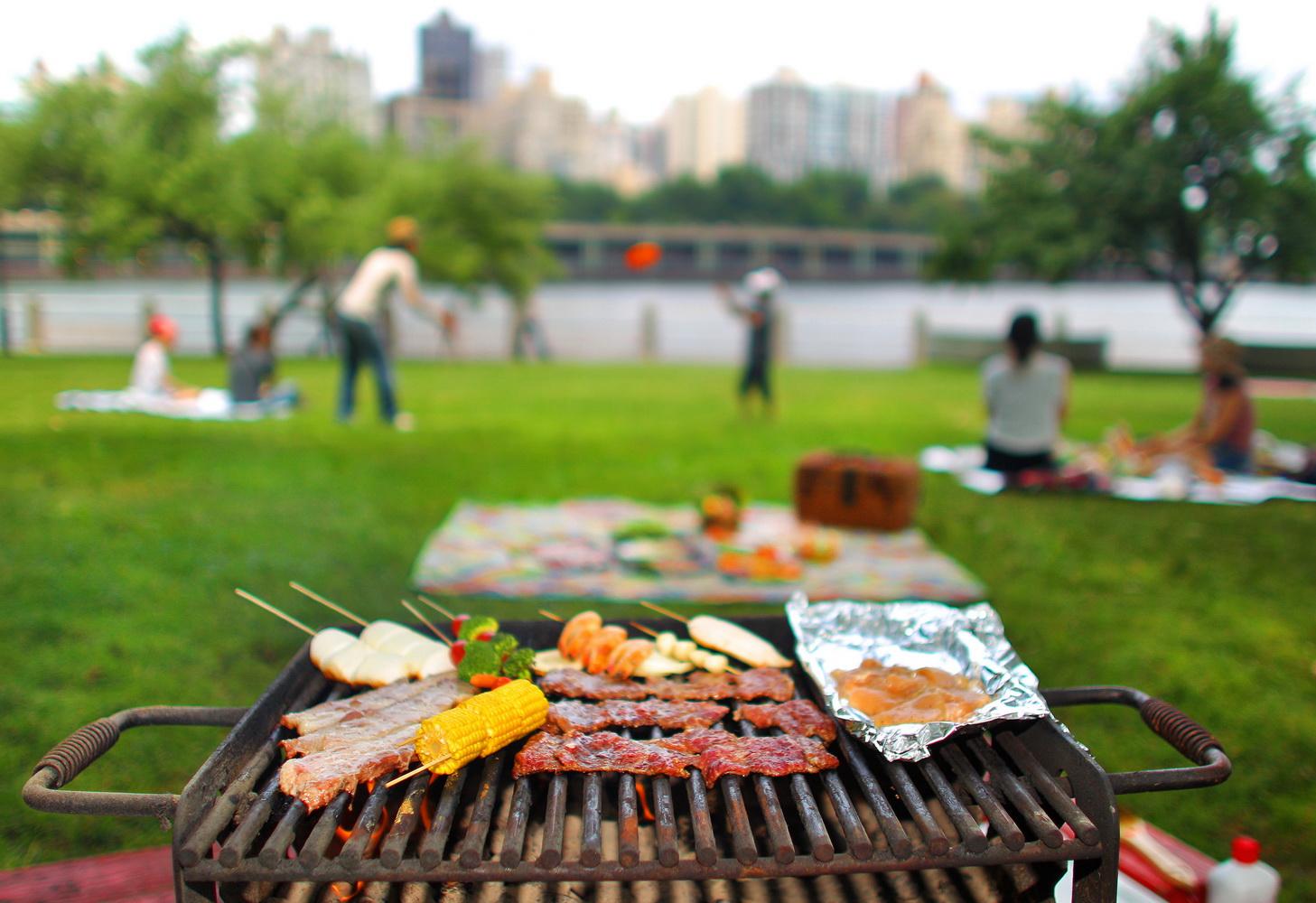 chuyen-picnic