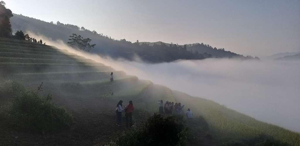 sương mù tại càng chài